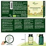 Zoom IMG-1 tarassaco bio vegavero 2500 mg