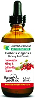 Berberis Vulgaris Q - Mother Tincture - Natural Kidney Cleanse and Gallbladder Protection - Detoxifying Strength for Discomfort, Nausea, Urinary System - 2fl.Oz (Alcoholic Extract)