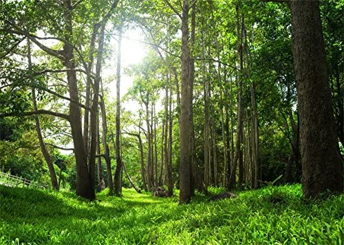 Leowefowa 7X5FT Spring Backdrop Jungle Forest Backdrops for Photography Trees Green Grassland product image