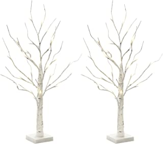 EAMBRITE Set of 2 2FT 24LT Warm White LED Birch Tree Light Tabletop Bonsai Tree Light Jewelry Holder Decor for Home Party Wedding Holiday