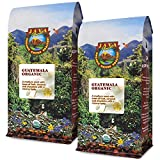 Java Planet, Organic Coffee Beans, Guatemalan Single Origin, Gourmet Low Acid Medium Roast of Arabica Whole Bean Coffee, Certified Organic, Smithsonian Bird Friendly Certified, Two 1LB Bags