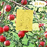 Fulfun Trampas Adhesivas de Doble Cara Amarillas, 25 Pegatinas de Papel para Moscas 20 x 15 cm para múltiples Insectos de Plantas voladoras (Incluidas 25 Unidades de Lazos giratorios)