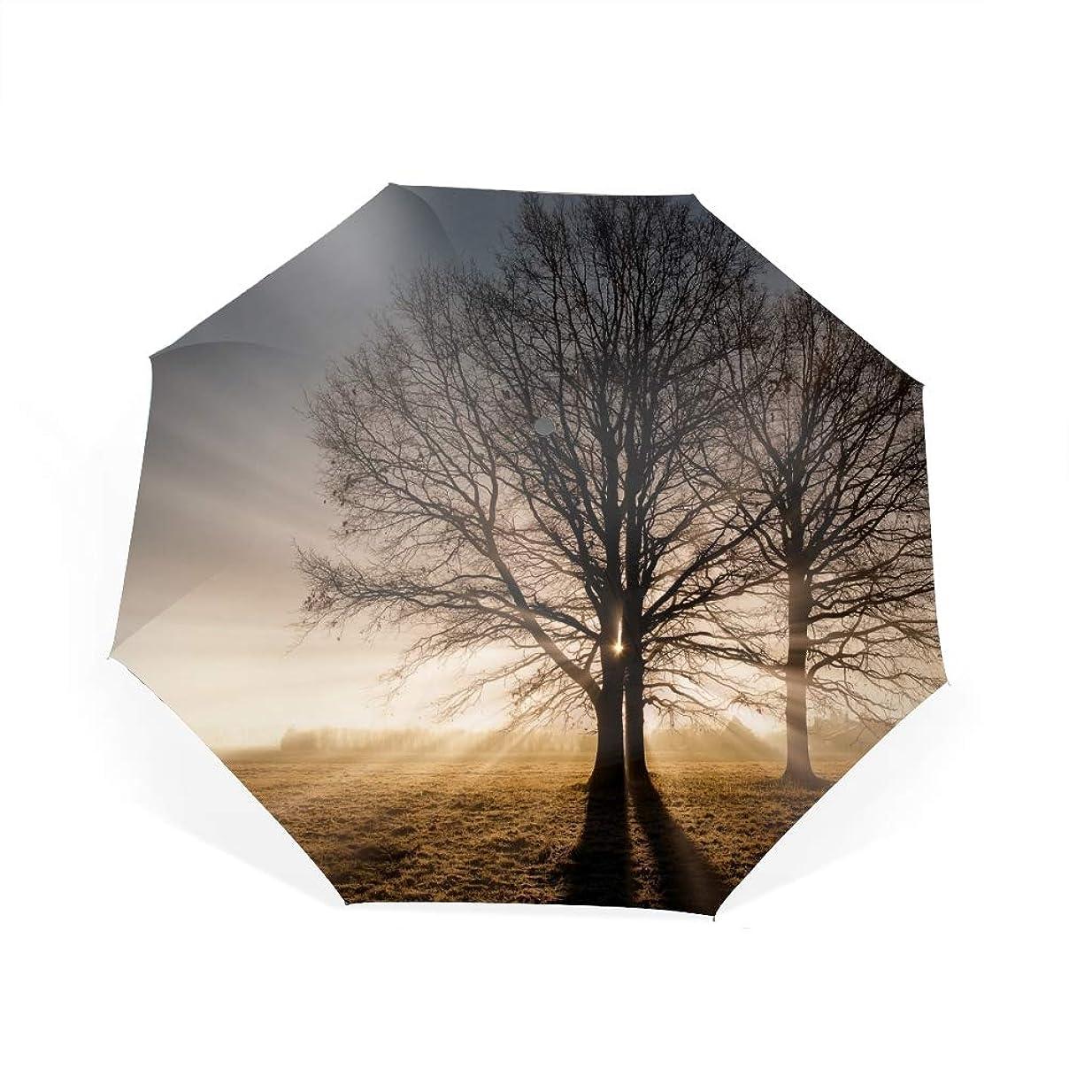赤面鉄道駅ラメ遮光率100% 遮蔽率100% 超撥水 耐風骨 晴雨兼用傘 大きめ サンビームツリーフィールド折りたたみ傘