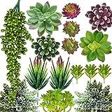 Artificial Succulent Plants - 16...