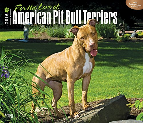 For the Love of American Pit Bull Terriers - 2016 Calendar 14 x 12in
