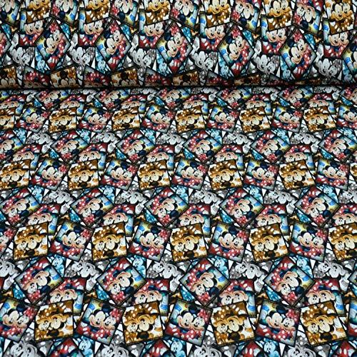 Disney Jersey Micky, Minnie Mouse, Fotos, Öko-Tex Standard 100, bunt (25cm x 160cm)