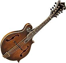 Washburn, 8-String Mandolin, Vintage (M118SWK-D)