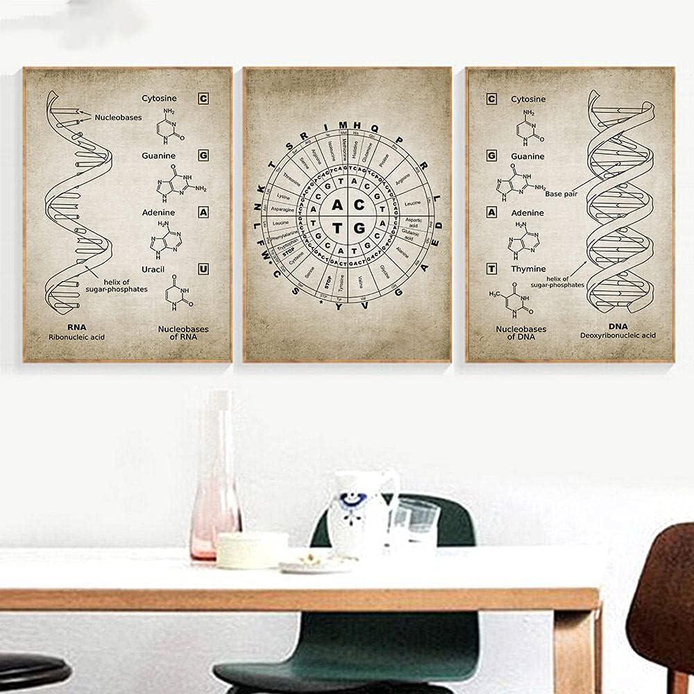 LZASMMVP Dallas Mall Chemical Element Prints DNA Po Poster Genetics Ranking TOP17 Art Wall