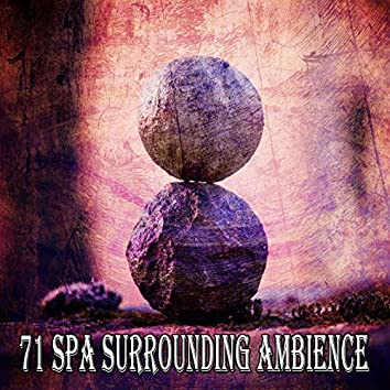 71 Spa Surrounding Ambience