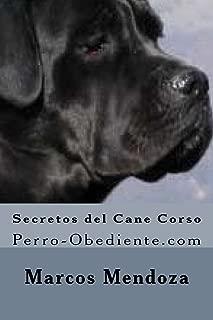 Secretos del Cane Corso: Perro-Obediente.com (Spanish Edition)