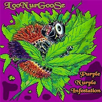 Purple Nurple Infestation