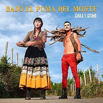 Bajó el Puma del Monte (feat. Silvio Rozzi & Martín Silva)