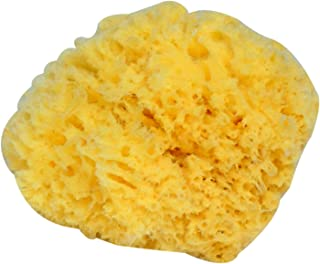 Vaorwne Natural Yellow Sea Grass Sponge. Perfect for Bath, Shower and Body Care. Softly Rough But Not Skin Irritating. For Facial Cleansing, Eco Friendly, Pamper Moms Brides Girlfriends & Teens