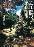 街道をゆく 24 近江散歩、奈良散歩