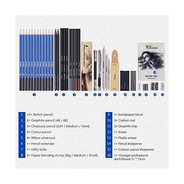 Amzdeal 42 Pcs Lápices de Dibujo Artístico para Boceto, Set de Dibujo con Lápices de Carbón y Grafito, Lapices Profesionales con Estuche Portátil para Estudiantes Artistas Niños Adultos