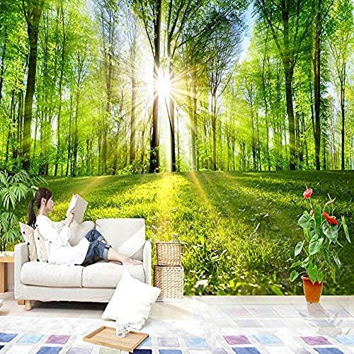 XHXI Papel tapiz fotográfico 3D Bosque Sol Naturaleza Paisaje Mural Sala de estar Dormitorio TV Sofá Telón de Pared Pintado Papel tapiz Decoración dormitorio Fotomural sala sofá mural-300cm×210cm
