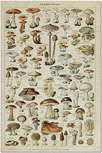 Mushrooms - C - Ex libris vintage - Adolphe Millot Artwork 82070...