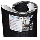 WALKINGBELTS Walking Belts LLC - Livestrong LS8.0T-C1 S/N:TM652 Treadmill Walking Belt 2ply Premium + Free 1oz Lube