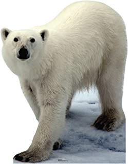 Advanced Graphics Polar Bear Life Size Cardboard Cutout Standup