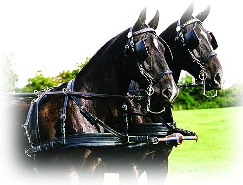 Harnais Lux cuir renforcé nylon Ideal - poney, noir - brun, inox, antidérapantes, à étranglement, bracelets de brancards
