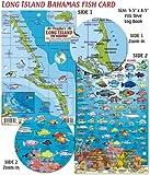 Long Island Bahamas Dive Map & Reef Creatures Guide Franko Maps Laminated Fish Card