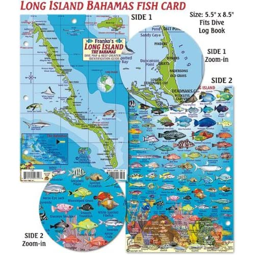 andros, bahamas, eleuthera bahamas, abaco bahamas, matthew town bahamas, san salvador bahamas, harbour island bahamas, ragged island, dean's blue hole, grand bahama, green turtle cay bahamas, paradise island, new providence, crooked island, hope town bahamas, inagua bahamas, grand cay bahamas, clarence town bahamas, freeport bahamas, rum cay bahamas, spanish wells bahamas, deadman's cay bahamas, cat island, berry islands, exuma bahamas, cat island bahamas, the bahamas, andros bahamas, ragged island bahamas, nassau bahamas, rum cay, half moon cay bahamas, on long island bahamas pictures