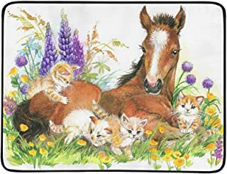 Horse and Kitten On Flower Meadow Foal Pattern Portable and Foldable Blanket Mat 60x78 Inch Handy Mat for Camping Picnic Beach Indoor Outdoor Travel