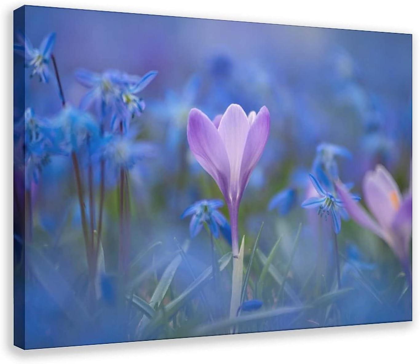 The First Flower of Spring Landscape Superlatite 2 Poster Rare Canvas Wallpaper