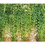 murando - Fotomurales 250x175 cm Papel pintado tejido no tejido Decoración de Pared...