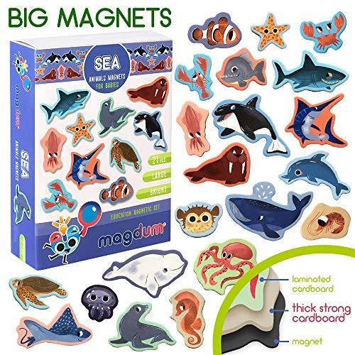 MAGDUM Meerestiere Magnet Set für Kinder - Echte Grosse Kühlschrank Magnete für Kleinkinder - Magnetisches Theater Lernspielzeug - Spiele für 3 Jährige - Magnet Spiele für Kinder - Tiere Spielzeug