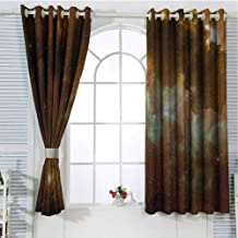 Constellation Living Room Curtains 2 Panel Sets Dusty Nebula Spiral Galaxy in Billions of Stars Infinity Home Decor Blackout Curtains W107 x L84 Inch Pale Coffee Mint Green White