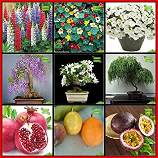 Creative Farmer Fruit Seeds Combo Flower Seeds & Fruit : Pomagranate, Passion Fruit - Yellow, Passion Fruit - Violet, Jaca...