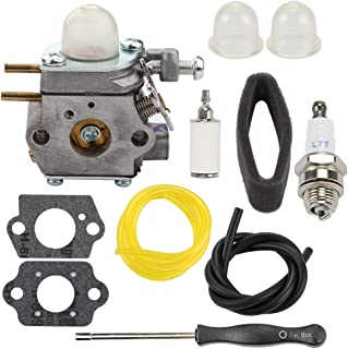 Carburetor for Troy-Bilt TB80EC TB32EC YM21CS TB21EC TB22EC TB2040XP TB22 2 Cycle String Trimmer Gas Craftsman Weed Eater Whacker 27CC Replaces # WT-973 MTD 753-06190 with Tool Fuel Line Filter