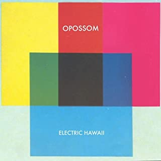 Electric Hawaii [Explicit]