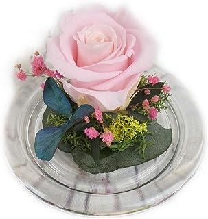 Rosa natural preservada roja blanca rosada azul salmon amarilla lila etc. Minicupula de cristal, con flores preservadas - ...