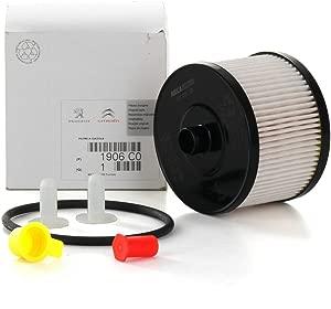 PSA TEC A1906C0 Gas Filter C4-C5-C8-307-308