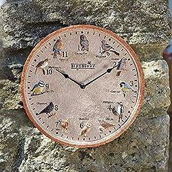 Birdberry 12 Variety Wild Bird Outdoor and Indoor Wall Clock 30cm / 12 Weatherproof