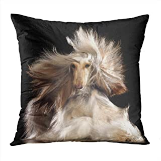 Joaffba Throw Pillow Cover Decorative 18x18 Inch Pillow Case Afghan Hound Dog Black Studio Abstract Home Car Sofa Office Meeting Room Decor Cushion Pillowcase