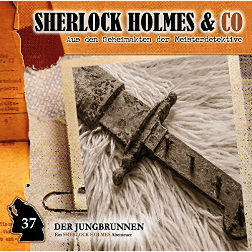 Der Jungbrunnen 2 audiobook cover art