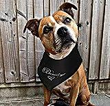 Valentine Custom personalisierte Hund Bandana. Schwarz mit weißer, rosa oder blauer Stickerei