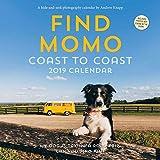 Find Momo 2019 Square Wall Calendar [Idioma Inglés]