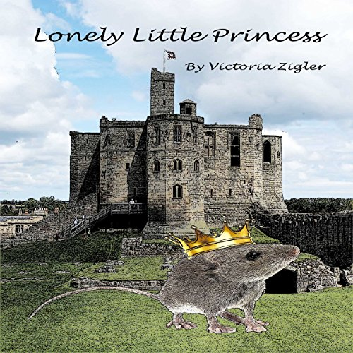 Lonely Little Princess audiobook cover art