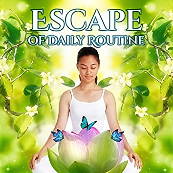 Escape of Daily Routine: Music for Meditation and Relaxation Body and Mind, Stress Relief, Free Time, New Age Sounds for Deep Sleep
