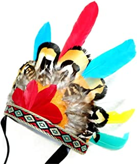 POPETPOP Indian Feather Headdress for Dog Cat Pet Beautiful Hats Headwear