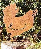 Rostalgie Figura Decorativa de gallina con Tornillo para Madera, 18 x 16,5 cm...