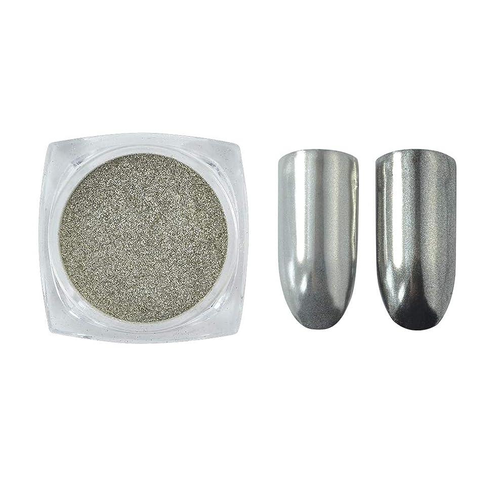 慎重罹患率カテナメーリンドス グリッターパウダーネイルミラーシルバー 鏡面効果に仕上がる 細かいパウダー銀色1g入る ケース付け