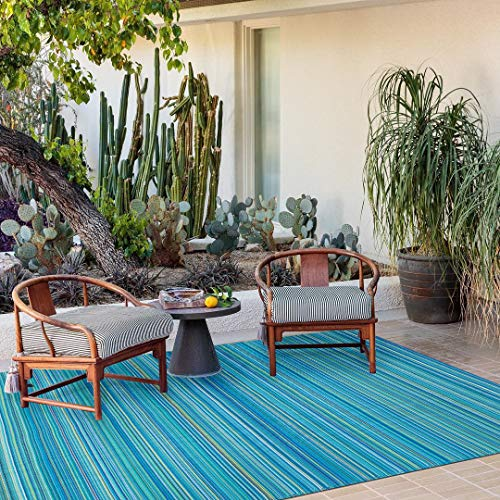 Santex Single Layer Outdoor/Indoor Plastic Rugs,Easy to Clean,Mildew, UV, Stain and Water Resistant(Blue,6x9 Feet)
