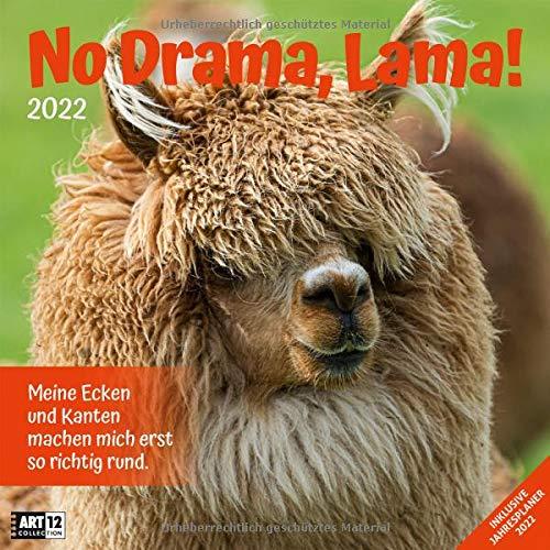 No Drama, Lama! 2022, Wandkalender / Broschürenkalender im Hochformat (aufgeklappt 30x60 cm) - Geschenk-Kalender mit Monatskalendarium zum Eintragen