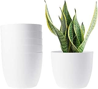 Best hanging plant pots plastic Reviews