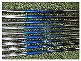 La artesanía de primera clase te hace más cómodo e Clubes de golf 113 P Gen2 Irons Sliver Golf Forged Iron 4-9W.G A Set de 8 piezas R / S Enviar en la cabeza Sharing ( Color : N.S.PRO ZELOS 8 S )